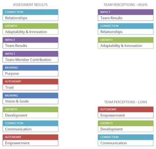 magic-team-assessment-results-perceptions